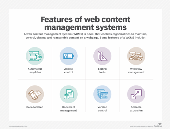best-cms-for-new-business-website