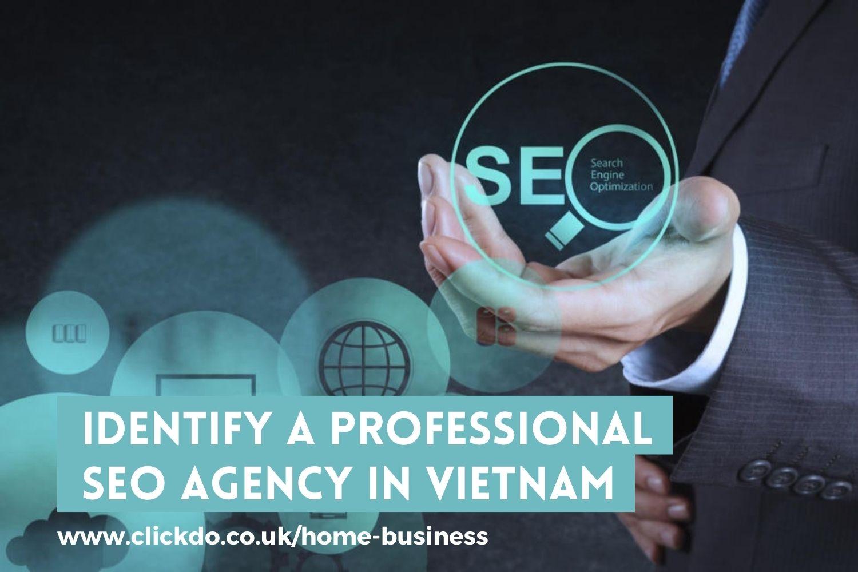 Identify A Professional SEO Agency In Vietnam