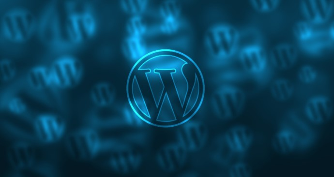 Important Things to Speed Up your WordPress Website