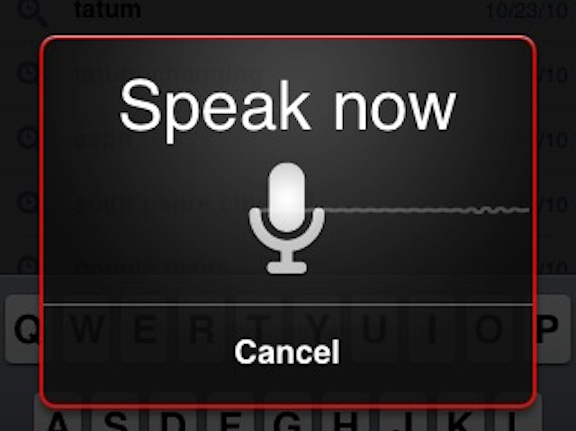 Voice-Search-Photo