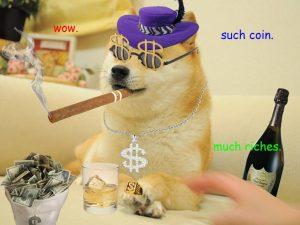 dogecoin-rich