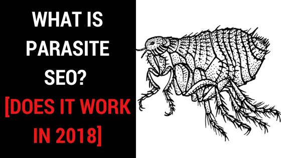 WHAT IS PARASITE SEO?