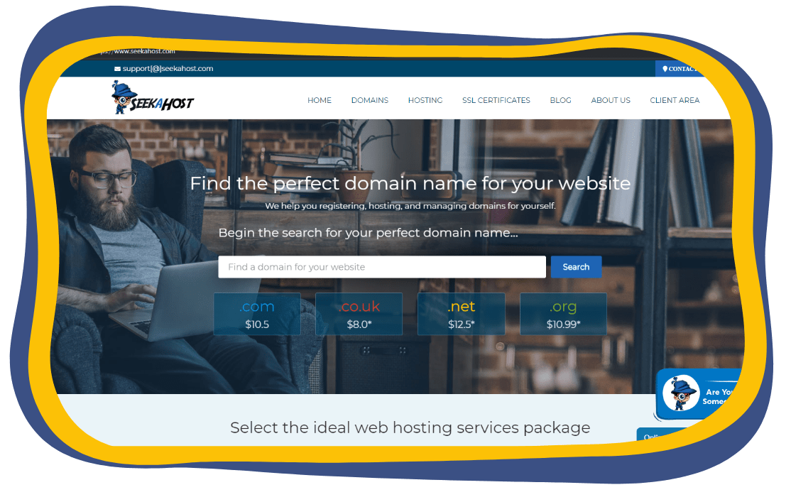 start-a-blog-by-registering-a-domain-at-SeekaHost