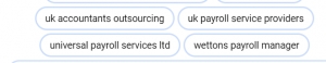 Case Study for Payroll Services Google Ads